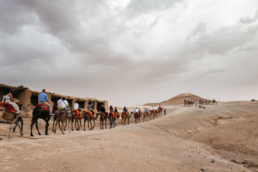 destination wedding photographer marrakech morocco photo photography bride camel rehearsal dinner ride bride groom tea desert experience